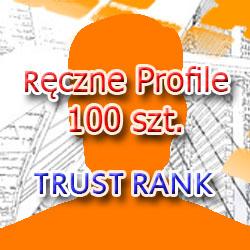 Sklep SEO :: Ręczne Profile 100